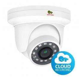 IP видеокамера Partizan IPD-2SP-IR SDM v1.0 Cloud