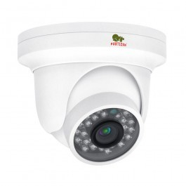 IP видеокамера Partizan IPD-1SP-IR SE 1.1