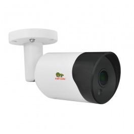 IP видеокамера Partizan IPO-2SP SE v4.0