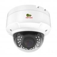 IP видеокамера Partizan IPD-VF5MP-IR AF 4K